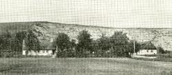 Åsen bag Bjergvej 83 (ca.1930)